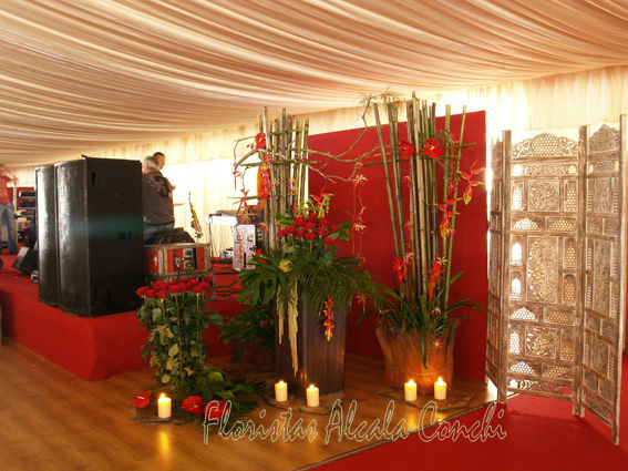 DECORACION  EN CARPA