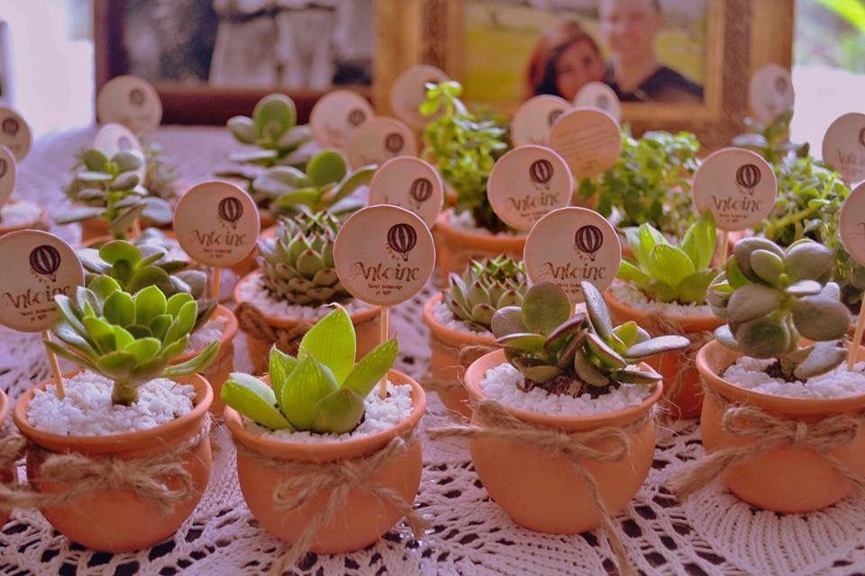 Mini plantas los mejores recuerdos vivos para tu boda.