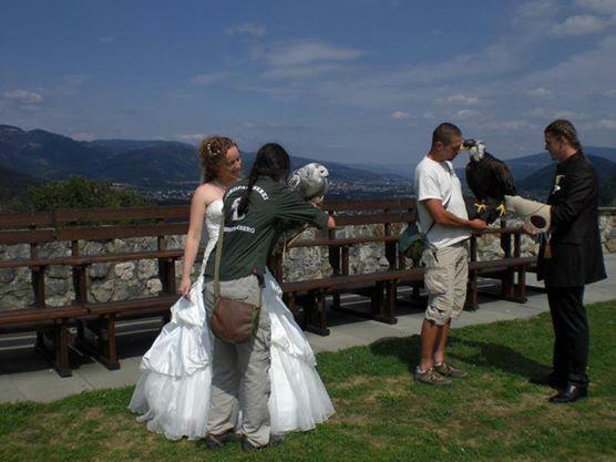 Beispiel: Brautpaar mit Greifvogel, Foto: Burg Oberkapfenberg.