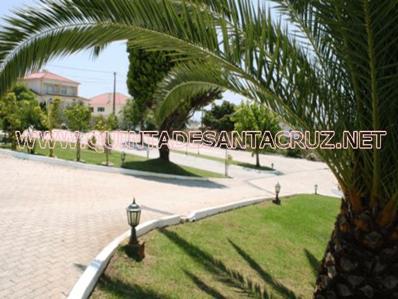 Foto: Quinta de Santa Cruz - Silveira