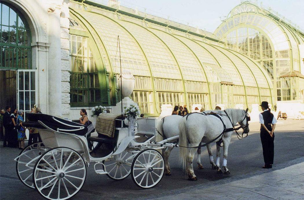Beispiel: Hochzeitskutsche, Foto: the wedding planner.