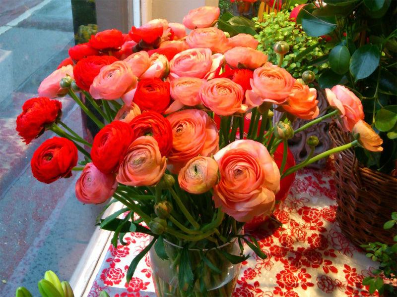 Beispiel: Schnittblumen, Foto: Blumen Wind.