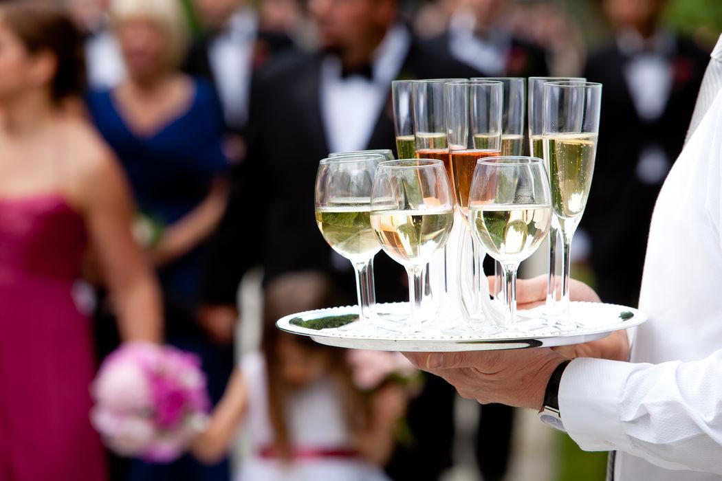 Deléitate con la diferente gama de vino blanco, cada uno contiene ejemplares magníficos.