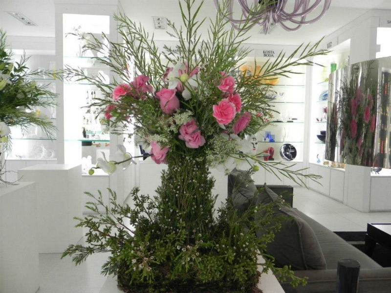 Escarlate Flores