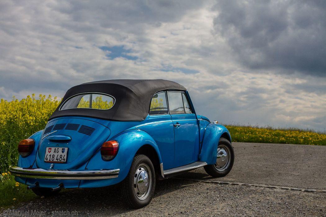 VW Käfer mieten zum selber fahren  - Kiwi's Limousines Ltd.