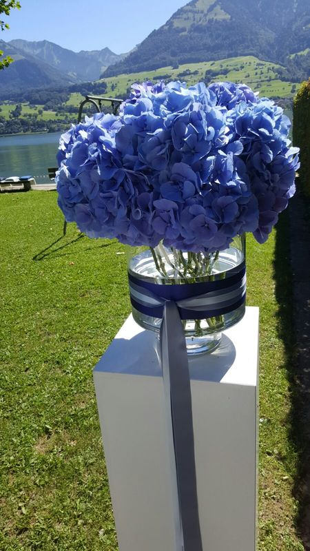 Blumendekoration: Hortensien blau