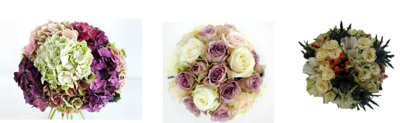 Jardín de té y flores. Bouquets morados
