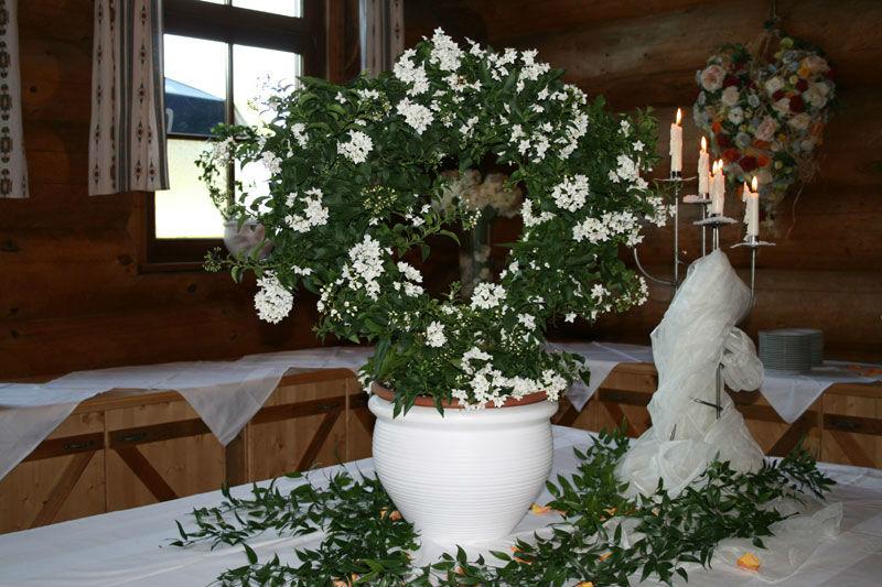 Beispiel: Blumenschmuck, Foto: Fautenhau Alm.