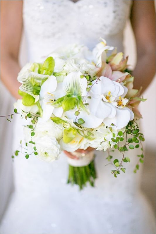 Webtitude Weweddings