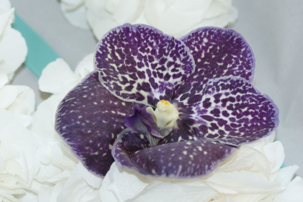 #Nature Lodge #florales Armband