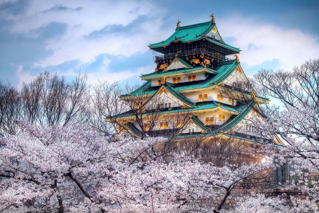 Nuove Ali - Giappone