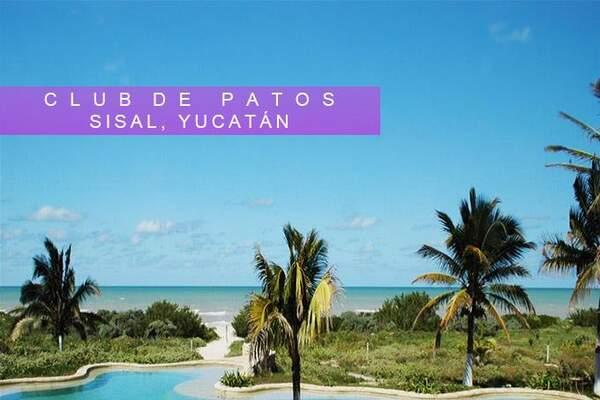 Hotel Club de Patos