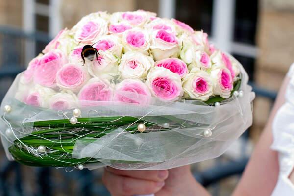 Blumenland Engler