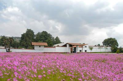 Hacienda Serratón