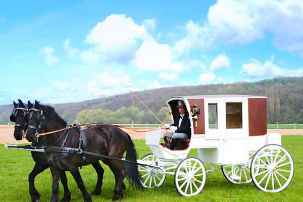 transport f r die hochzeit mit pferdekutsche. Black Bedroom Furniture Sets. Home Design Ideas