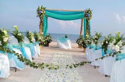 Camelia Wedding Planner & Event