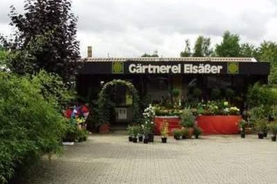 Gärtnerei Elsäßer