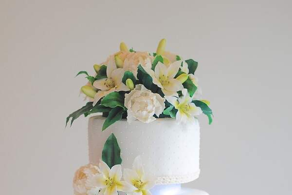 Fernanda Benaion Cake Designer