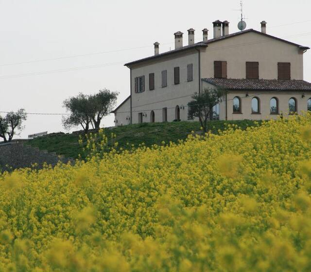 Az. Agricola Rocca Le Caminate