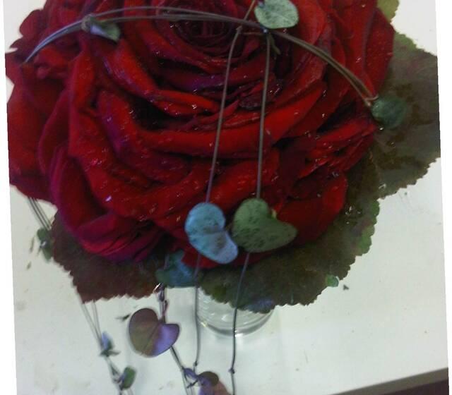 flors i verdesca