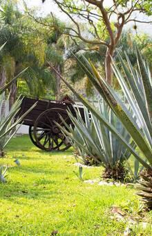 Linda Vista Jardín