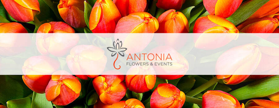 Antonia Flowers & Events
