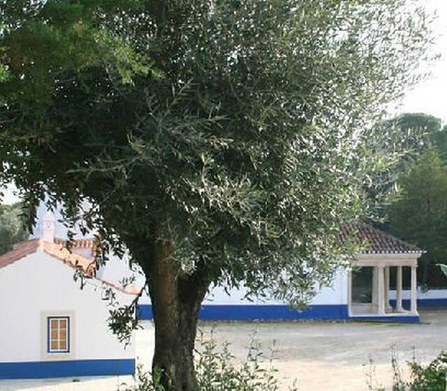 Foto: Quinta dos Anjos