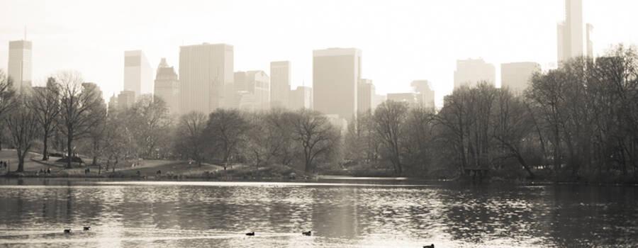 © New York Paris Connection