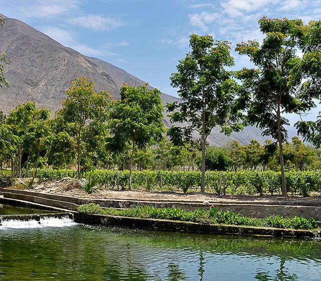 Hacienda Guizado Portillo