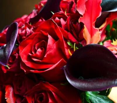 Ramos de Novia Floristika, es la especialidad de la casa, nuestros productos estan de venta en Liverpool, somos profesionales, dedicados, puntuales, plasmamos tus emociones, amor y pasión nos diferencian de otros en nuestros productos Ramo de Novia Rojo, Pasión y modernidad juntas en un solo elemento.