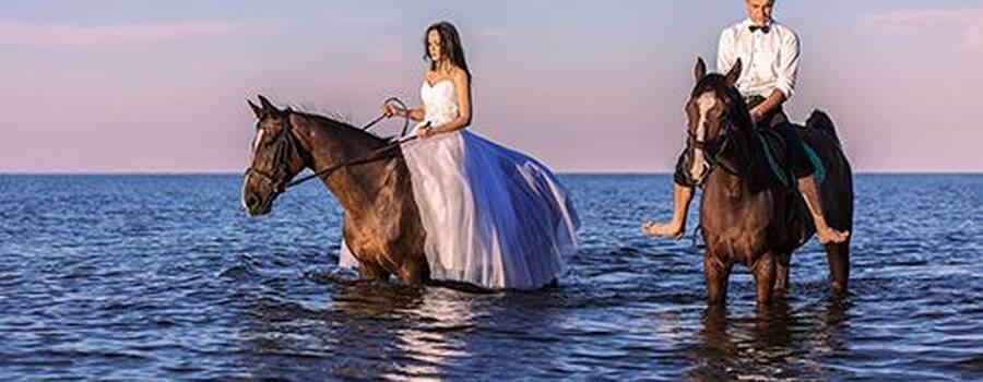 sesjaślubna na koniach-Mrzeżyno