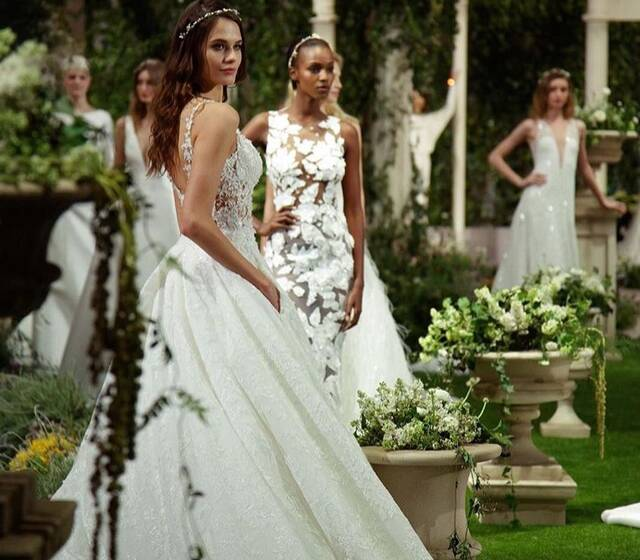 In Bloom  Pronovias 2019