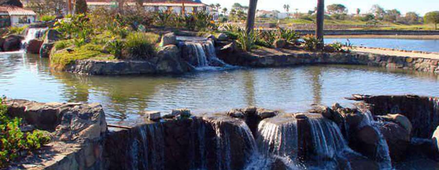 Jardines. Bajamar. Ensenada,BC