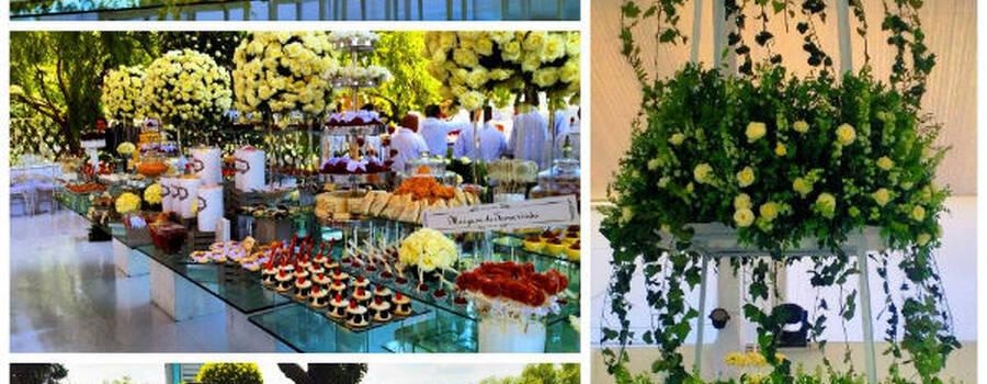Experiencia en sonido e iluminación para bodas - Foto César Álvarez Eventos
