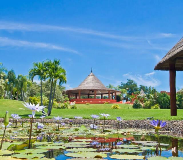 Locación perfecta para celebrar una boda rodeada de majestuosas áreas verdes y las mejores comodidades - Foto Rojo Azafrán
