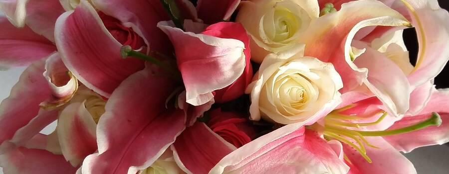 Ramo de novia rosas y stargeizer