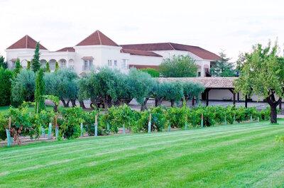 Foto: Bodega Casa del Valle