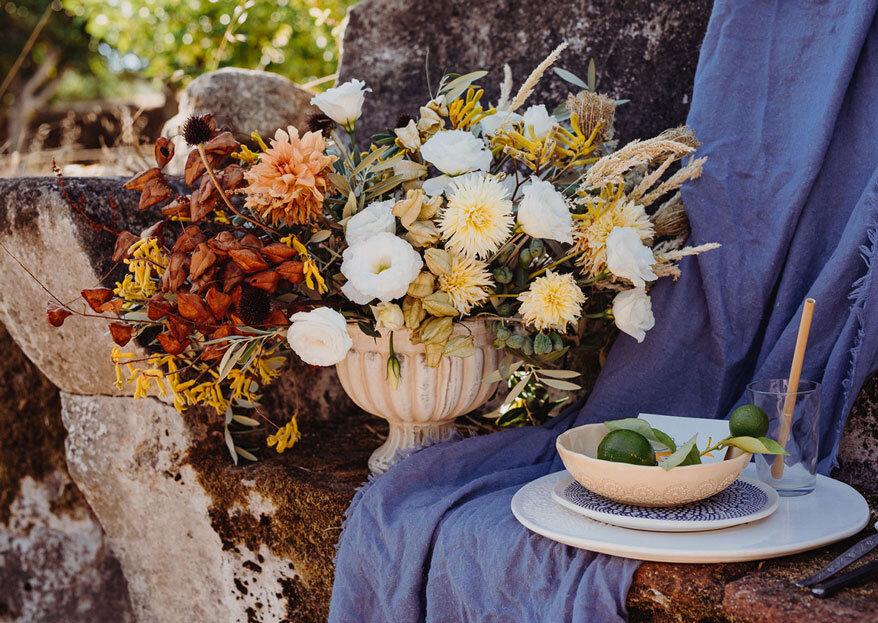 Be Aromatic: uma empresa made in nature com o doce aroma do campo e um traço de arte
