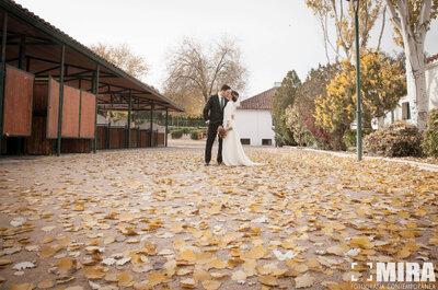 Fotografías de boda muy emotivas: la celebración de Paula y Antonio en un hipódromo