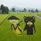 Art on Ricefield, Akita