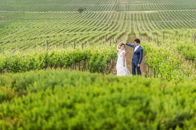 Destination wedding no Chile de Alyne & Davi: ao pôr do sol em uma vinícola com cenário cinematográfico