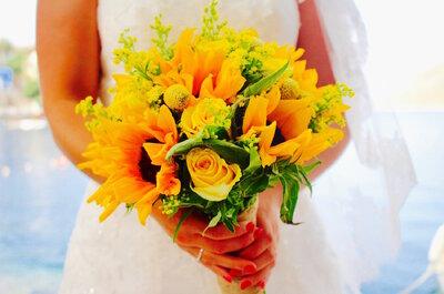 Les mariages perchés, spécialiste dans l'organisation de mariages éco-responsables