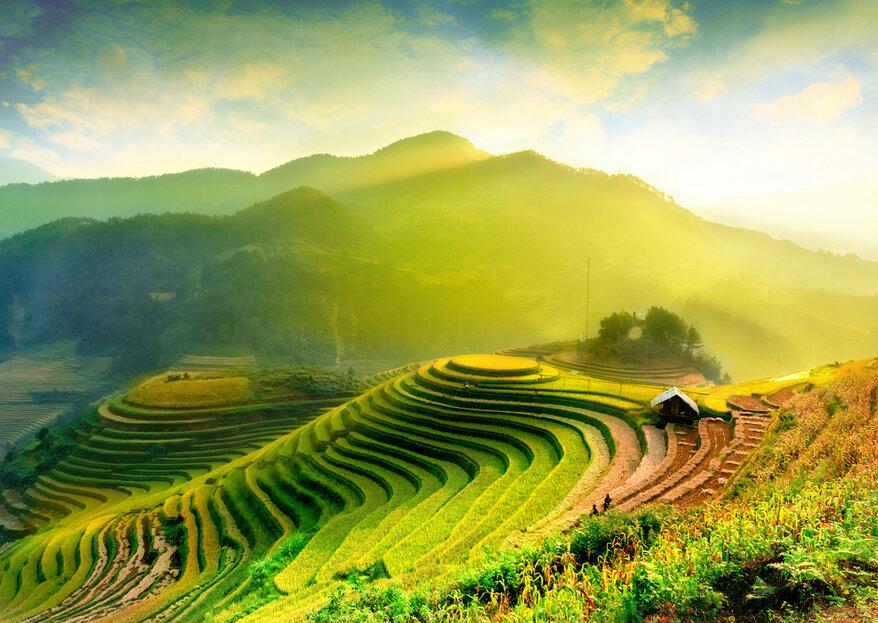 Luna de miel en Vietnam: Una cultura milenaria que ¡amarás conocer!