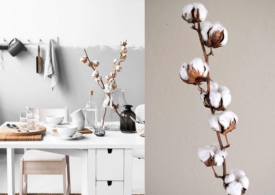 Decorar com a flor de algodão: o pormenor decorativo mais trendy!