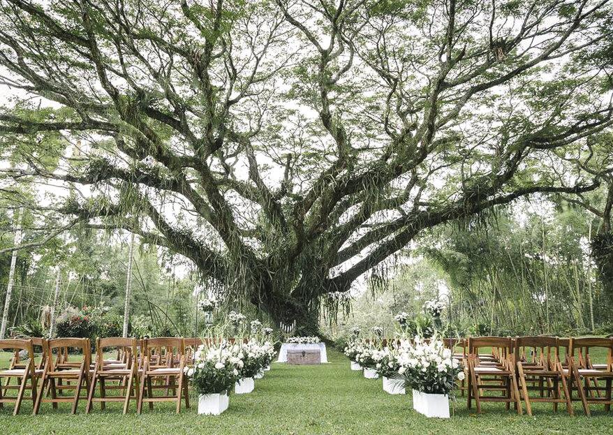 Con María Rivas Event Planner una boda original y sorprendente ¡sí es posible!