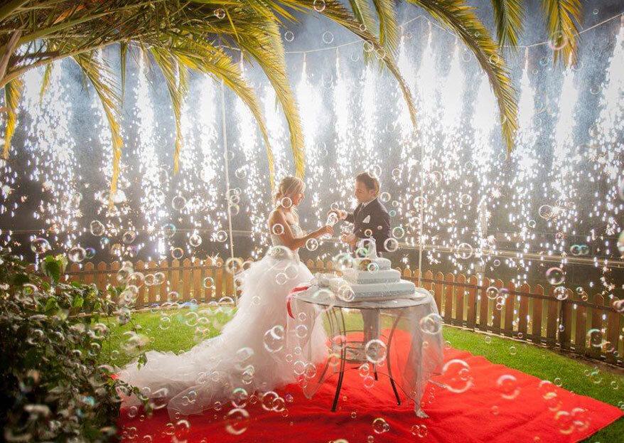 Won: animação e alegria num casamento cheio de surpresas... Tal como sempre sonhou!