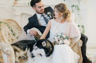 Командная работа! Как объединить образы жениха и невесты: 10 забавных идей!