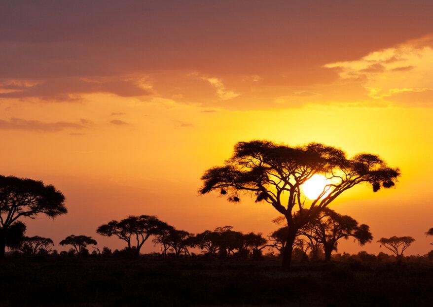 Lua-de-mel no Quénia: paixão na jóia de África