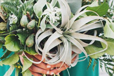 Air Plants para tu ramo de novia: Una tendencia que ¡nos fascina!