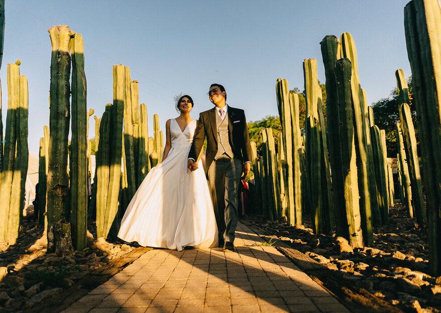 ¿Te casas en la CDMX? Estos proveedores te ayudarán a producir la boda de tus sueños